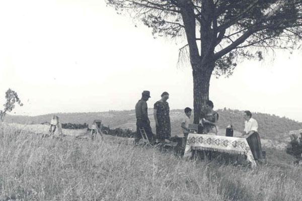 """1963 Congresso IARD (Rotary) para superdotados, Capolona, """"La Nussa"""" , Campo de Pinheiros"""