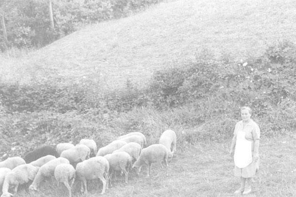 """1963 - Congresso IARD (Rotary/Milão) para os superdotados – Capolona, """"La Nussa"""" – aqui Carmela com as cabras."""